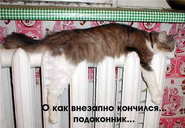 http://www.ruscable.ru/interactive/forum/upload/3889d09fbf1d4dd36a8c816d7fd6e94f.jpg