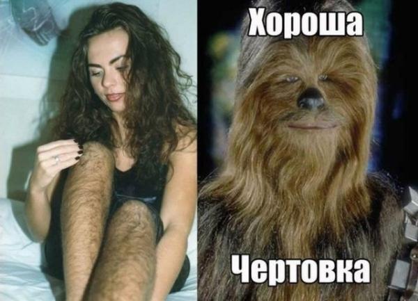 волоса.jpg