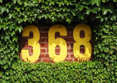 368.jpg
