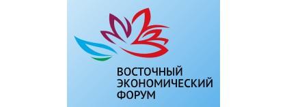 ДРСК обеспечит электроснабжение объектов Восточного экономического форума