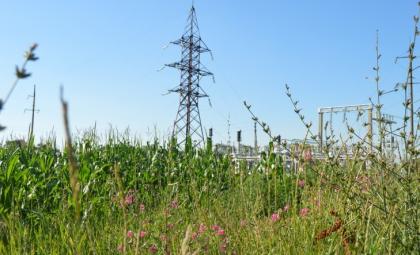 4 миллиона рублей направило Кубаньэнерго на ремонт ЛЭП в Лабинском энергорайоне