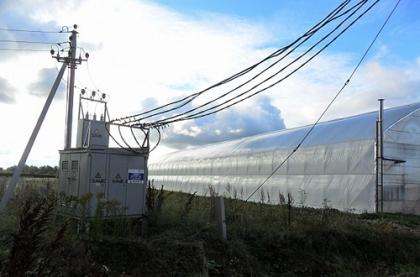 Энергетики МРСК Центра и Приволжья обеспечили электроснабжение тепличных комплексов в Завьяловском районе Удмуртской Республики