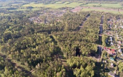 Ленэнерго обеспечило мощность дачному поселку в Выборгском районе Ленинградской области