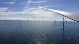 Shell и Eneco планируют строительство ветропарка мощностью 759 МВт для электроснабжения завода по производству водорода в Нидерландах